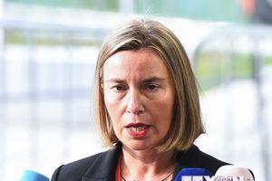 Giới chức EU hối thúc các nước thành viên 'có trách nhiệm hơn'