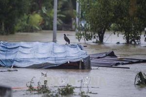Myanmar nỗ lực khắc phục hậu quả vỡ đập
