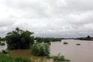 Mực nước ở nhiều sông miền Bắc đang lên nhanh
