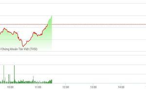 Chứng khoán sáng 30/8: Dầu khí, ngân hàng phục hồi, VN-Index đã xanh