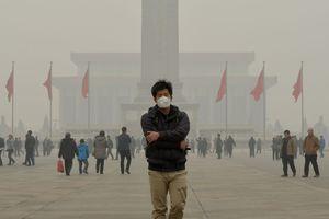 Khoa học chứng minh không khí ô nhiễm gây ra các căn bệnh về não bộ