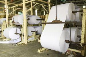 Sản xuất bột giấy tái chế: Bột giấy sạch đưa về Trung Quốc, rác ở lại Việt Nam