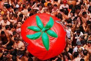 'Bì bõm' trong lễ hội 'Đại chiến cà chua' lớn nhất thế giới