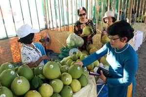 Thừa Thiên - Huế chính thức khai hội Thanh trà lần VI