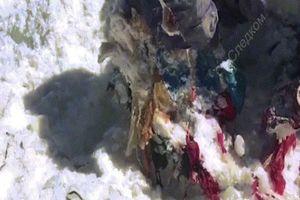 Kinh ngạc người leo núi Nga mất tích 31 năm thi thể vẫn còn nguyên vẹn