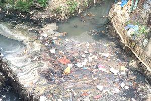 Xử lý nghiêm việc gây mất vệ sinh môi trường