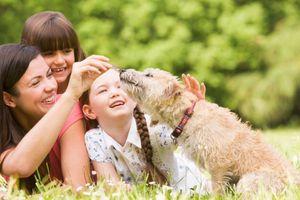 6 cách giúp con biết yêu thương