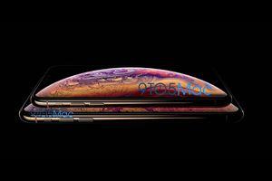 Rò rỉ thông tin, hình ảnh thế hệ iPhone XS, XS Plus và iPhone 'LCD'