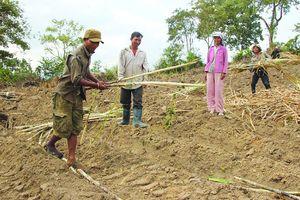 Hỗ trợ đất cho đồng bào dân tộc thiểu số, hộ nghèo ở Đồng bằng sông Cửu Long