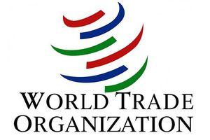 Tổng thống Mỹ cân nhắc rút khỏi WTO