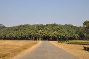 Ấn Độ: Cây đa to nhất thế giới có tán rộng hơn 14.400 m2