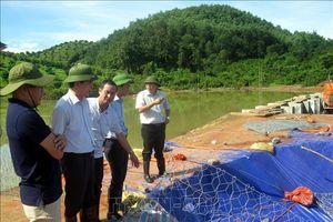 Không có sự cố vỡ đập hồ Ban ở Hòa Bình