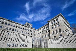 Nga cảnh báo Mỹ sẽ chịu thiệt hại nếu rút khỏi WTO