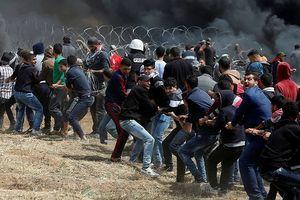 Căng thẳng tiếp tục bùng phát trên dải Gaza, 240 người bị thương