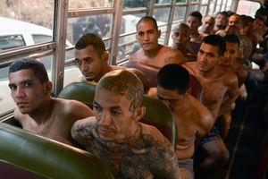 Người El Salvador chạy trốn bởi sự đe dọa của các băng đảng