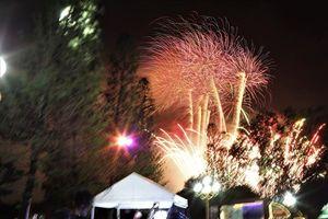 TP.HCM: Hàng vạn người đổ về Đầm Sen xem pháo hoa mừng Quốc khánh