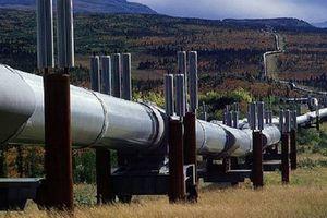 Phe đối lập Canada kêu gọi họp khẩn cấp vì đường ống dẫn dầu Trans Mountain