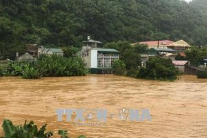 Hội Chữ thập đỏ Việt Nam cứu trợ khẩn cấp người dân Thanh Hóa, Nghệ An, Sơn La