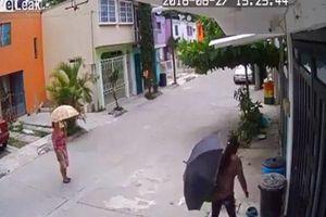 Ngán ngẩm clip người phụ nữ trộm bát thức ăn của chó trên đường