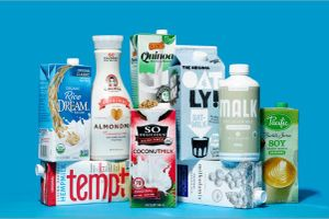 Ngành công nghiệp sữa bò lo lắng trước sự trỗi dậy của sữa thực vật