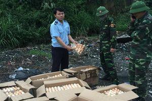 Móng Cái: Nhận vận chuyển thuê 5.800 quả trứng gà nhập lậu