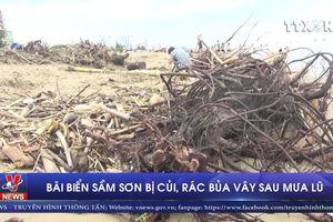 Sau mưa lũ, bãi biển Sầm Sơn bị củi, rác bủa vây