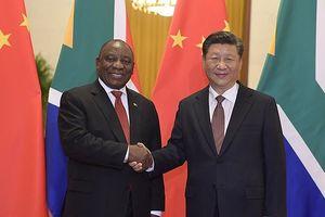 Khai mạc Hội nghị Thượng đỉnh Diễn đàn Hợp tác Trung Quốc - châu Phi