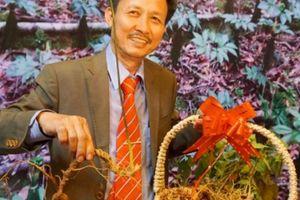 Ngắm củ sâm Ngọc Linh hình rồng tại chợ sâm 'khủng' nhất TP.Kon Tum