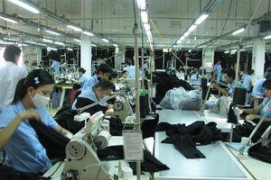 Mỗi tháng Việt Nam chi gần 268 triệu USD nhập khẩu bông