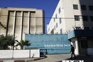 Palestine: Việc ngừng viện trợ cho UNRWA là quyết định 'vô nhân đạo'