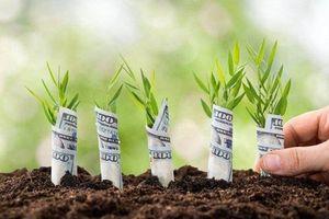 Những ý tưởng khởi nghiệp hấp dẫn trong nông nghiệp