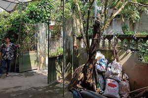 Vụ giết 2 vợ chồng ở Hưng Yên: Hung thủ giết người táo tợn, manh động