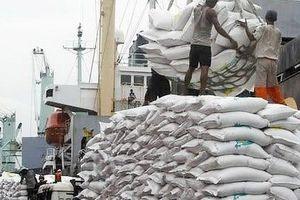 Xuất khẩu gạo sẽ tăng mạnh từ nay đến cuối năm