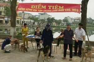 Hà Nội: Tăng cường quản lý nuôi, giết mổ, kinh doanh chó, mèo