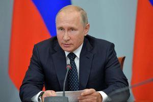 Tổng thống Nga Putin bất ngờ ra mắt trên chương trình truyền hình thực tế