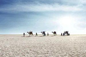 Sa mạc muối khổng lồ của Ấn Độ hút khách nhờ vẻ siêu thực