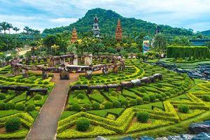 Khách Việt đổ về thiên đường xanh Nong Nooch vì sao?