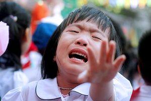 Khoảnh khắc bỡ ngỡ của trẻ lớp 1 ngày khai trường