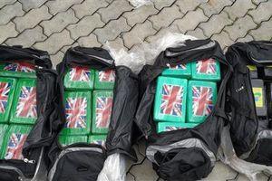 Số vụ ma túy do Hải quan bắt giữ tăng gần 120%