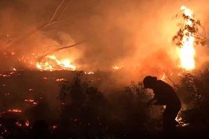 Hàng trăm chiến sĩ chữa cháy rừng ở Quảng Bình suốt 10 tiếng
