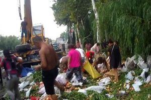 Xe tải chở 5 tấn đào bị lật trên đường, người dân đổ xô đến 'hôi của'