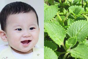 5 mẹo giúp trẻ 4 tháng tuổi bị ho nhanh khỏi mà không cần dùng thuốc