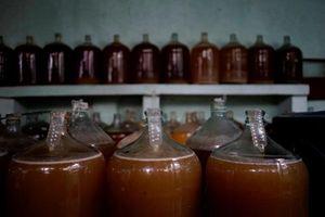 Người dân Cuba bất ngờ 'thần thánh hóa' cách lên men rượu