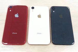 iPhone 6,1 inch bất ngờ lộ diện với màu sắc mới