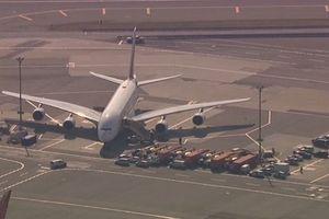 Hàng trăm hành khách đổ bệnh trên chuyến bay từ Dubai tới New York