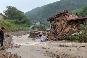 Lũ lụt hoành hành Triều Tiên, 76 người chết