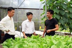 Phát triển nông nghiệp phù hợp quá trình công nghiệp hóa, đô thị hóa (Kỳ 1)