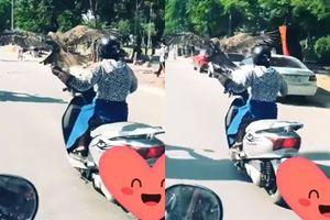 Video cảnh báo: Nữ 'Ninja Lead' vừa lái xe chạy băng băng vừa để chim đậu trên tay