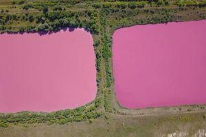 Hồ nước màu hồng gây xôn xao nước Nga