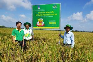 Tăng sản lượng cây lúa, cây ổi nhờ sử dụng phân bón Phú Mỹ